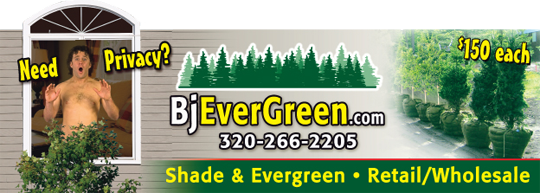 evergreen-billboard