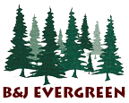 BJ Evergreen