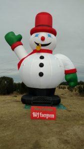 Giant Frosty